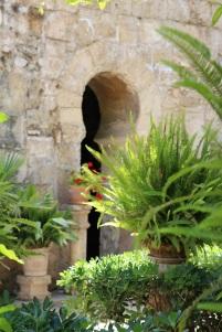 Palma mallorca Banys Àrabs6