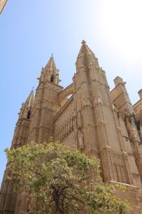 palma mallorca catedral8